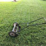 Pięć narzędzi niezbędnych w pracach w ogrodzie